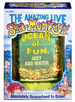 Ocean of Fun