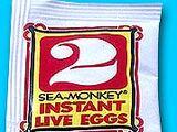 Instant Live Eggs