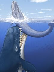 Whale01-leviathan-rendering 22737 600x450