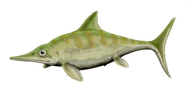 File:Ophthalmosaurus BW.jpg