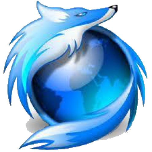 Cool Firefox Icon Blue Fox Pirate...