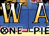 One Piece: The New Age