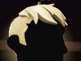 Admiral Hair