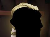 Executive Admiral Hair