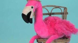 Mango Flamingo
