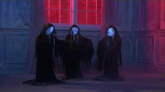 Animated Witch Coven
