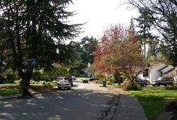Wedgwood Seattle 1