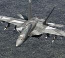 F/A-18F Super Hornet (Omega)