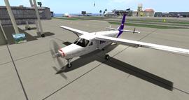 Cessna 208B Grand Caravan (Dani) 1
