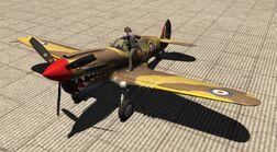 ZSK P-40E snp07