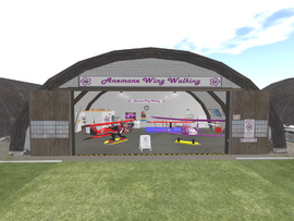 AWW hangar 1