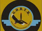 Grupo Operativo de Búsqueda y Rescate
