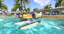 DHC-2 Beaver (S&W)