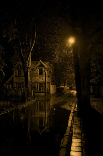 House on a dark lane by igor demidov-d4lsuqy