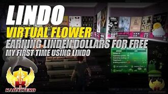 Lindo Virtual Flower ★ Earning Linden Dollars For Free With Lindo ★ My First Time Using Lindo