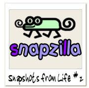 Snapzilla-03-05-05