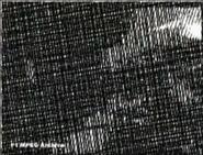 Снимок экрана (152)