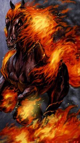 Horseonfirebystephencro