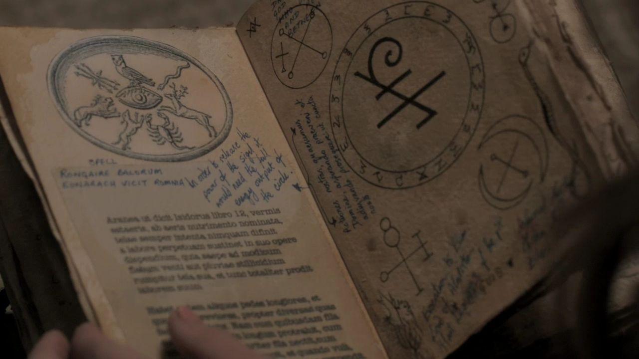 9-sigel-in-the-book.jpg