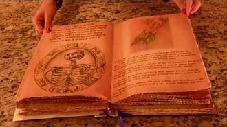 Pagan Scrapbook Supply - Cassie Blake's Secret Circle Book of Shadows