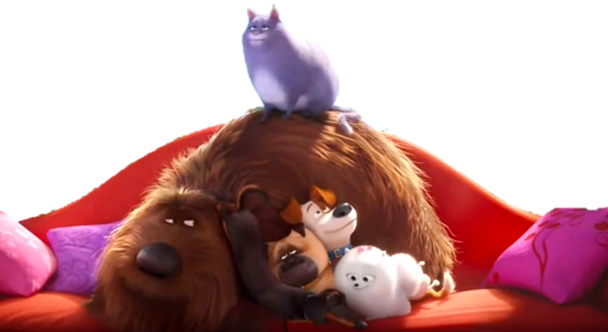 the secret life of pets wiki fandom powered by wikia. Black Bedroom Furniture Sets. Home Design Ideas