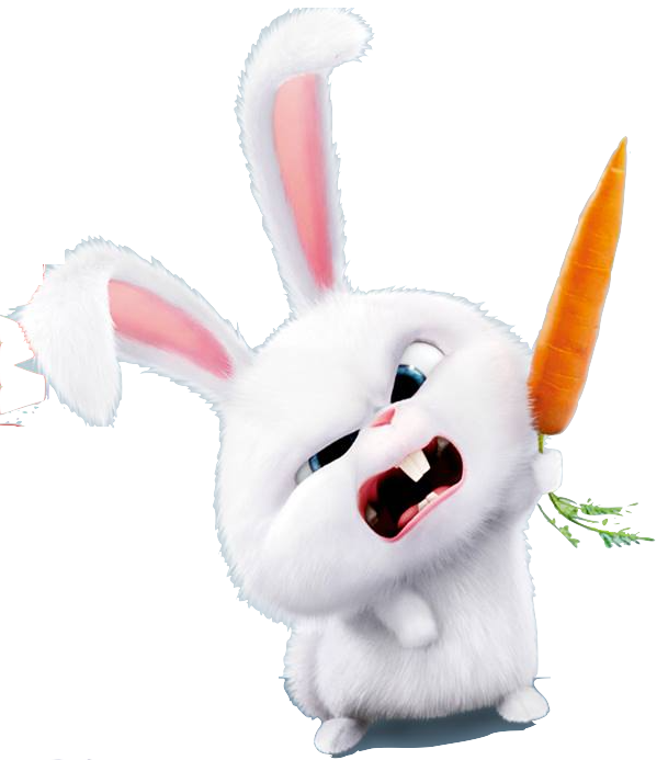 Image - Snowball's Carrot.png