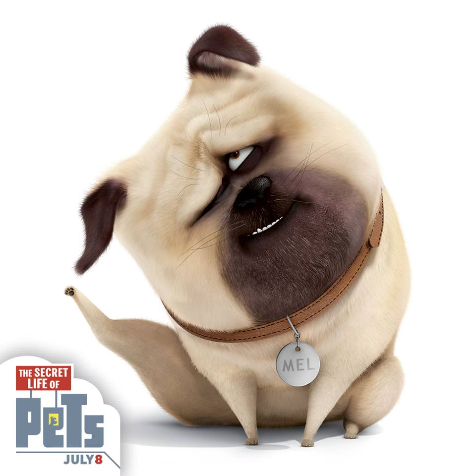 Image scratching the secret life of pets wiki for Tattoo secret life of pets