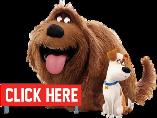 Pets click