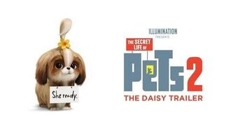The Secret Life Of Pets 2 - The Daisy Trailer HD