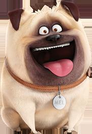 File:Mel the secret life of pets.png