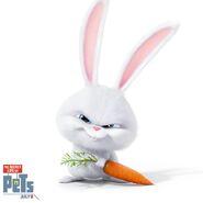 Snowball carrot