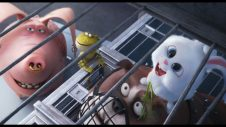 This Bunny Is Awesome In 'The Secret Life Of Pets' Clip