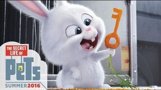 The Secret Life of Pets - Kevin Hart Is Snowball (HD) - Illumination