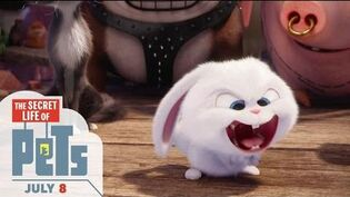 The Secret Life Of Pets - Happy Easter (HD) - Illumination