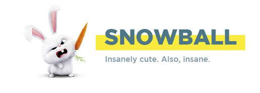 Snowball-rabbit