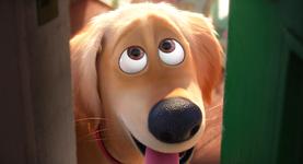 Full screenshot of dog bye
