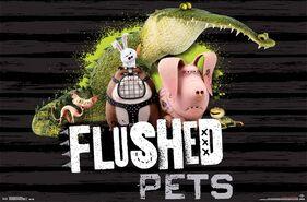 Flushed pets card