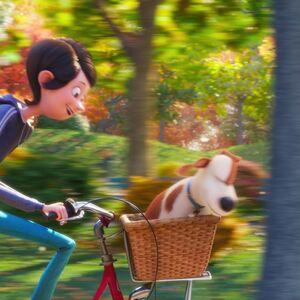 Katie Gallery The Secret Life Of Pets Wiki Fandom
