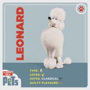 Leonard card