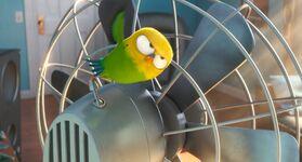 Sweet Pea On The Fan