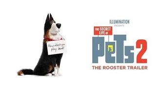 The Secret Life Of Pets 2 - The Rooster Trailer HD