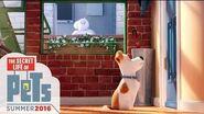 The Secret Life of Pets - Meet Max & Gidget (HD) - Illumination