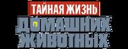 Pets russian