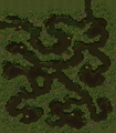 Southern Forest.png