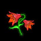 Grays Lily
