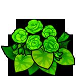 File:Green Begonia.png