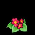 Common Scarlet Begonia