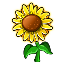 File:Vibrant Sunflower.png