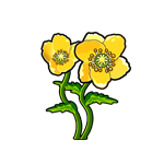 File:Moondance Poppy.png