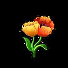 Tulip of the Orient
